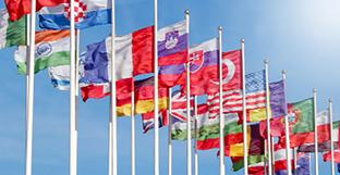 Mezinárodní zastoupení